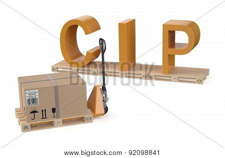 Cip Concept
