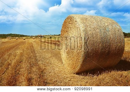hay roll on meadow