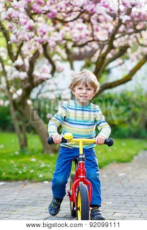Little Toddler Kid Boy Riding With His First Bike
