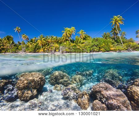 Beautiful tropical island with beautiful reef underwater and white sand beach dotted with palm trees above the water