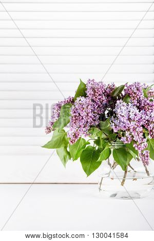 Purple lilac flowers in glass vase on background with white shutters