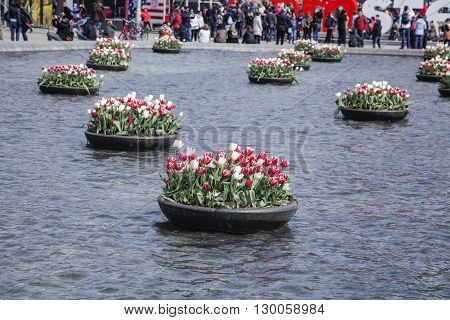 netherland, central square with sighn I love Amsterdam from water among tulip flowerbeds, lifestyle people concept