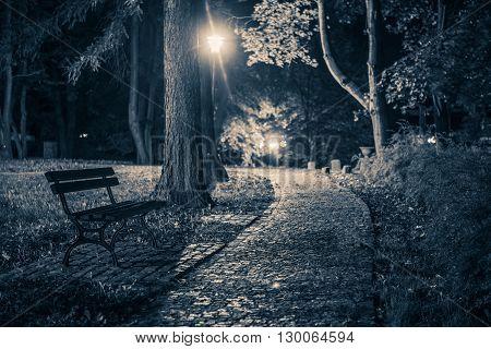 Dark Creepy Park Place. City Park at Night. Dark Blue Color Grading.