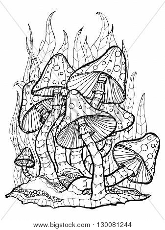 Coloring page with forest mushrooms. Isolated outline on white background