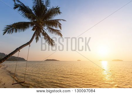 Palm tree on a tropical seaside during amazing sunset.