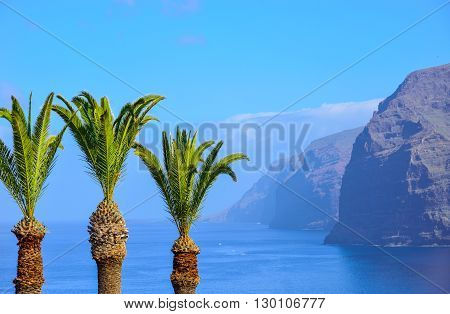 Los Gigantes mountain and palm trees against the sea in Tenerife Spain