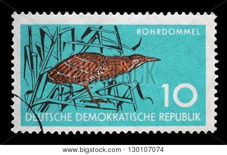 ZAGREB, CROATIA - JULY 02: a stamp printed in GDR shows Bittern, Wading Bird, Wildlife Protection, circa 1959, on July 02, 2014, Zagreb, Croatia