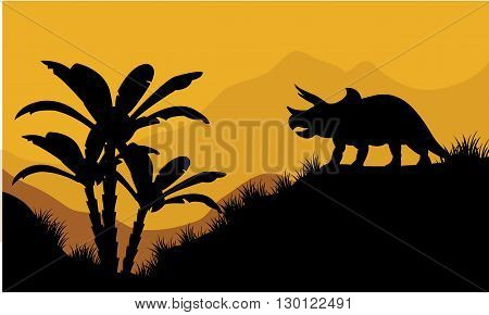Single triceratops in fields scenery at the sunset