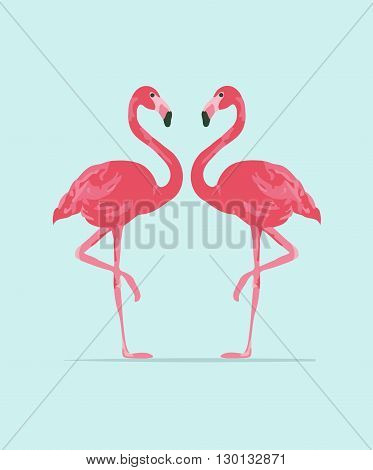 Vector illustration pink flamingo couple. Exotic bird. Cool flamingo decorative flat design element.