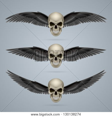Three evil looking ivory coloured two-winged skulls.
