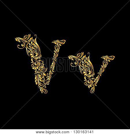 Richly decorated letter 'v' in upper and lower case.