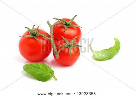 Fresh cherry tomato with basil leaves isolated on white background.