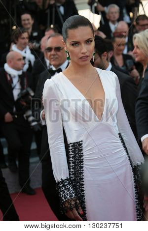 Adriana Lima attends a screening of 'Julieta' at the annual 69th Cannes Film Festival at Palais des Festivals on May 17, 2016 in Cannes, France.