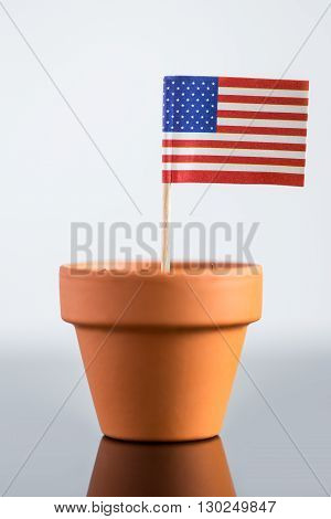Plant Pot With American Flag