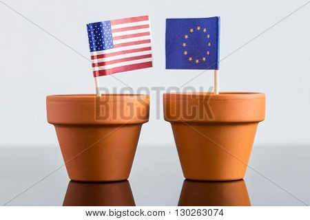 Plant Pot With European And Usa Flag