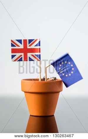 Plant Pot With European And British Flag