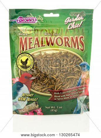 Winneconne WI - 18 May 2016: Bag of dried mealworms for birds made by Brown's on an isolated background