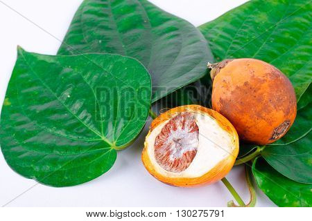 Betel nut and betel leaf on white background isolated