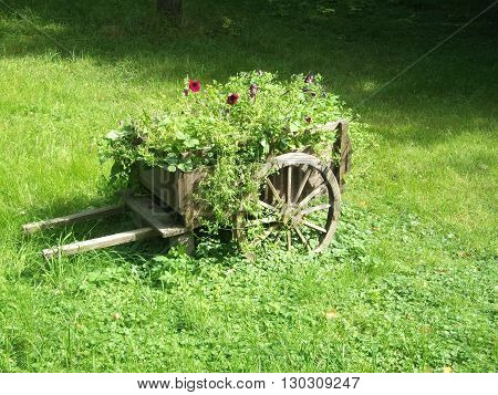 Beauty flowerbed with the wooden wain installation in the garden
