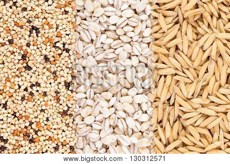 closeup grains background. food background. grains. food