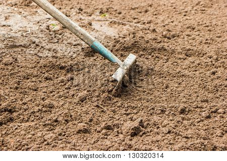 rake loosen dig up the ground in the spring before planting vegetables in the garden
