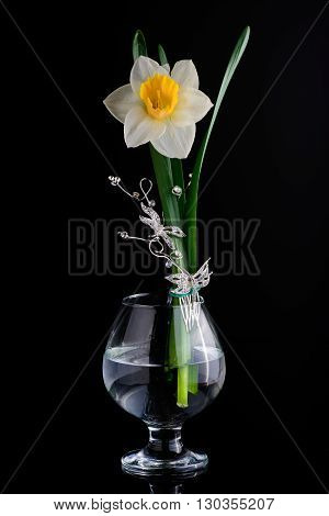 floral composition glass lilia black background butterfly