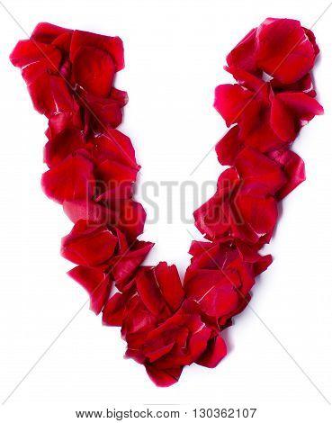 Alphabet V Made From Red Rose