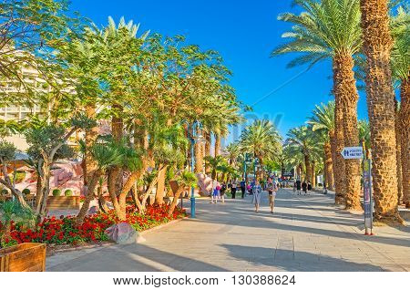 EILAT ISRAEL - FEBRUARY 23 2016: The city promenade adjacent to the lush gardens with palms and bright flowers on February 23 in Eilat.