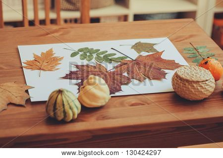 poster of preparations for autumn craft with kids. Herbarium from dried leaves. Learning children at home fall nature collage.