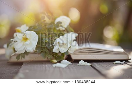 Branch of a dogrose and the old open book on a wooden table.