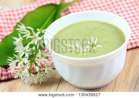 Wild  bear garlic soup,  bear allium flower on top