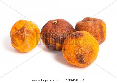Group of rotten oranges isolated on white background poster