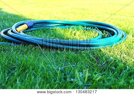 Hose for watering the lawn on his shaven