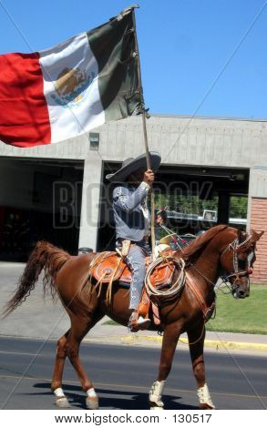Mexican Flag Bearer