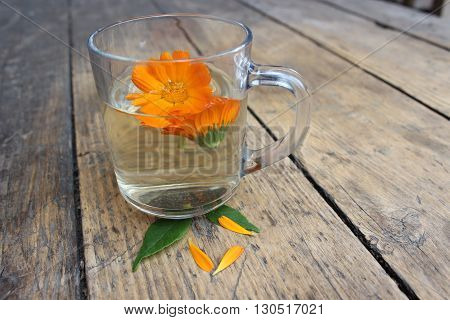 Calendula flower in a glass cup. Tincture.
