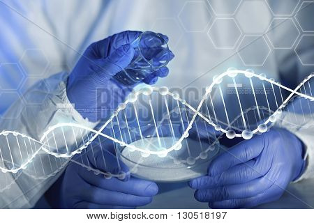 science, chemistry and people concept - close up of scientists hands with glass and chemical powder in petri dish making test or research at laboratory over blue dna molecule structure
