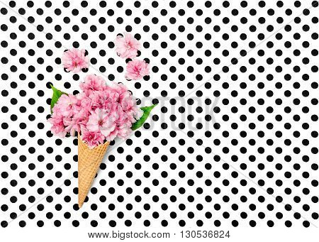 Cherry tree flowers in ice cream waffle cone on polka dot background. Flat lay. Minimal concept