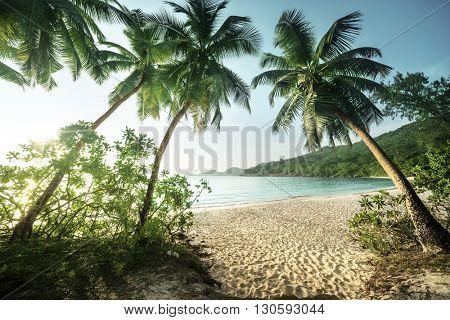 sunset on the beach Takamaka, Mahe island, Seychelles