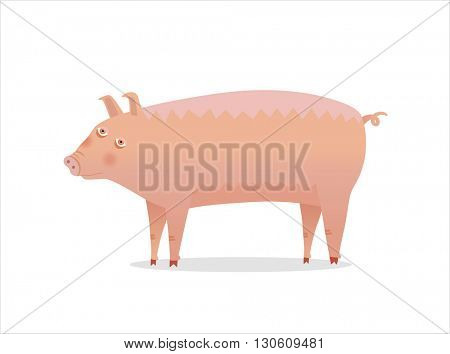 A vector illustration of a piglet on white background.