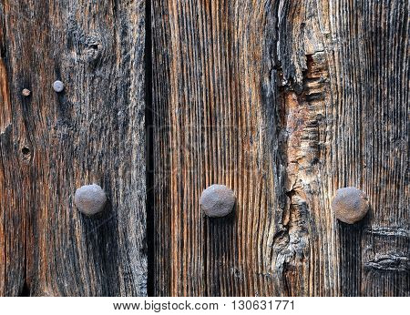 Old rusty bolts heads on the shabby wooden wall