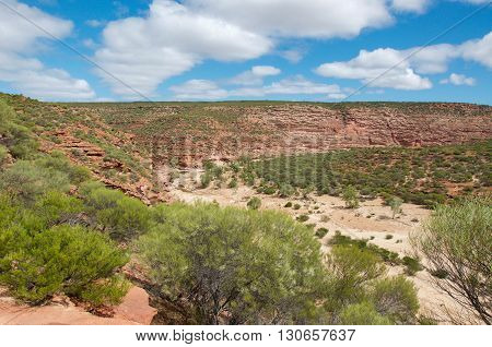 The Murchison River gorge with sandstone cliffs and native greenery along the dry riverbed in Kalbarri National Park under a blue sky with clouds in Western Australia.