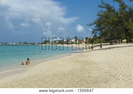 Tropical Island Sandy Beach