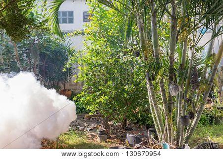 Bangkok Thailand - January 31 2016 : Unidentified people fogging DDT spray kill mosquito for control Malaria Encephalitis Dengue and Zika in village at Bangkok Thailand.