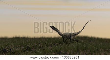 3d illustration of alluring coelophysis dinosaurus
