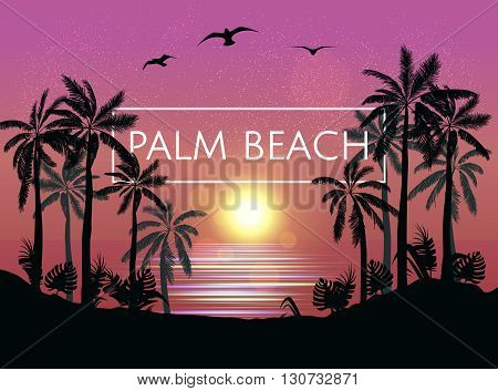Summer  Beach Night Palm Silhouettes On Summer Sunset With Beautiful Night Sky Background. Tropical