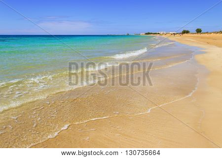 The most beautiful sandy beaches of Apulia. Salento coast: Torre Pali beach (Lecce). ITALY
