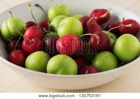 Green and Red Fruit plate with good light