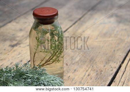 Sprig plant Shepherd's purse Capsella bursa-pastoris in a glass bottle. Tincture.Wormwood.