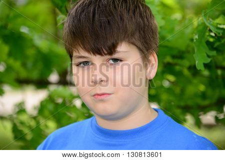 Portrait of a boy of about 12 years in Oak Park
