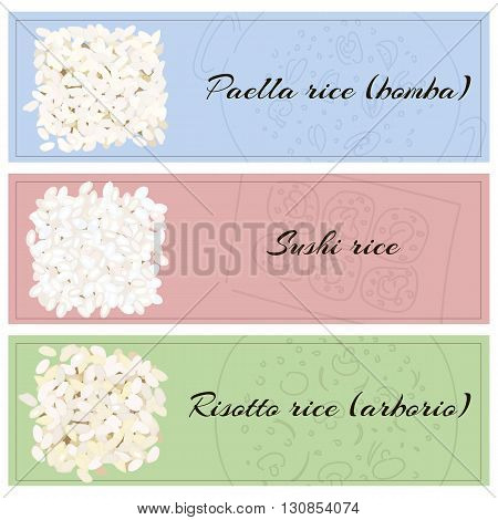 Rice for various dishes. Paella, risotto, sushi. Vector illustration eps10.